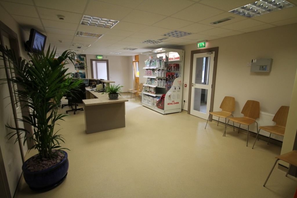 Brayvet's new spacious waiting room and reception area
