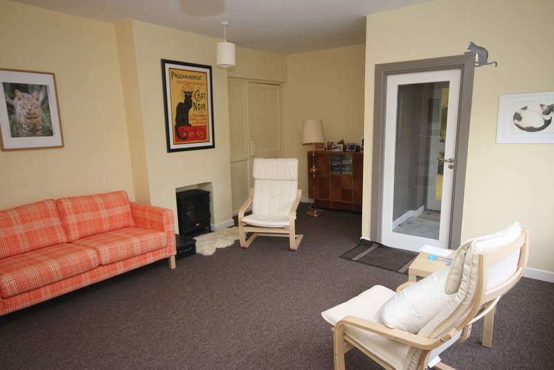 The new BrayVet Cat-Only waiting room