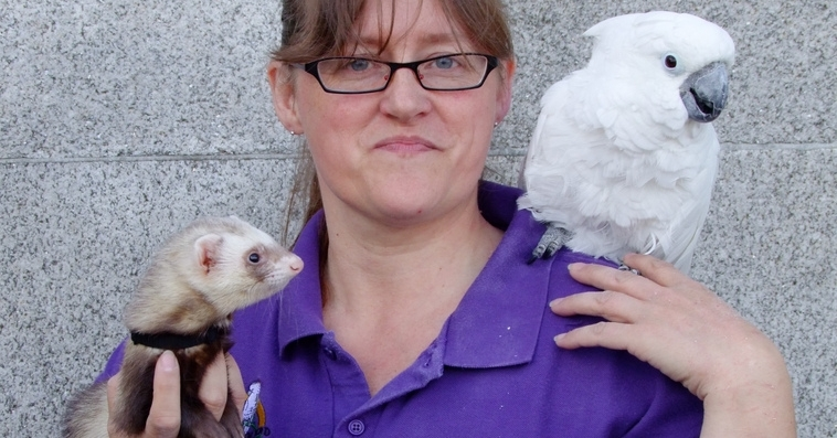 Loeki the Cockatoo and Duncan the Ferret
